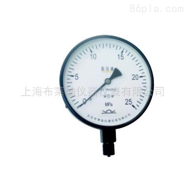 YA-150.AH.200径向氨用压力表