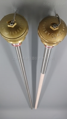 WRNK-1323无固定装置多对式铠装元件热电偶